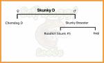 skunky d.png