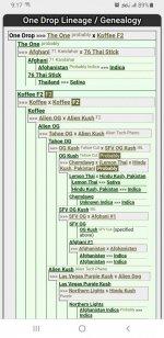 Screenshot_20210201-091721_Chrome.jpg